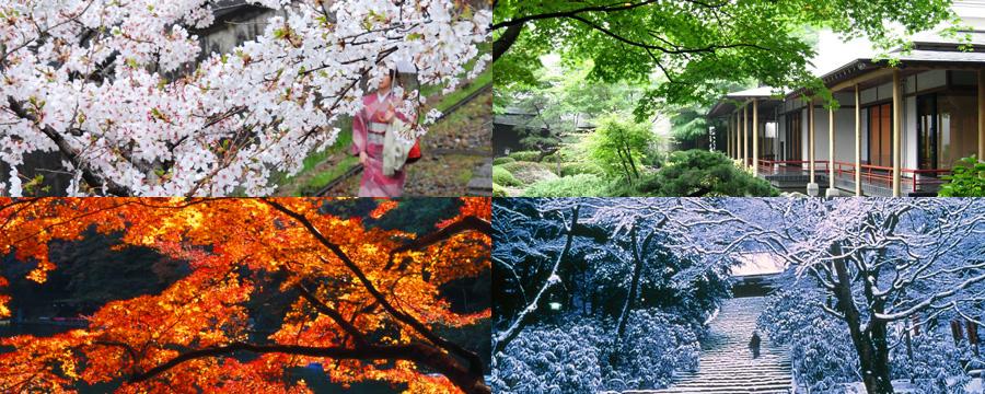 Viajar a Japón y sus Diversas Épocas