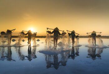 Mantente curioso: experimenta Vietnam desde casa